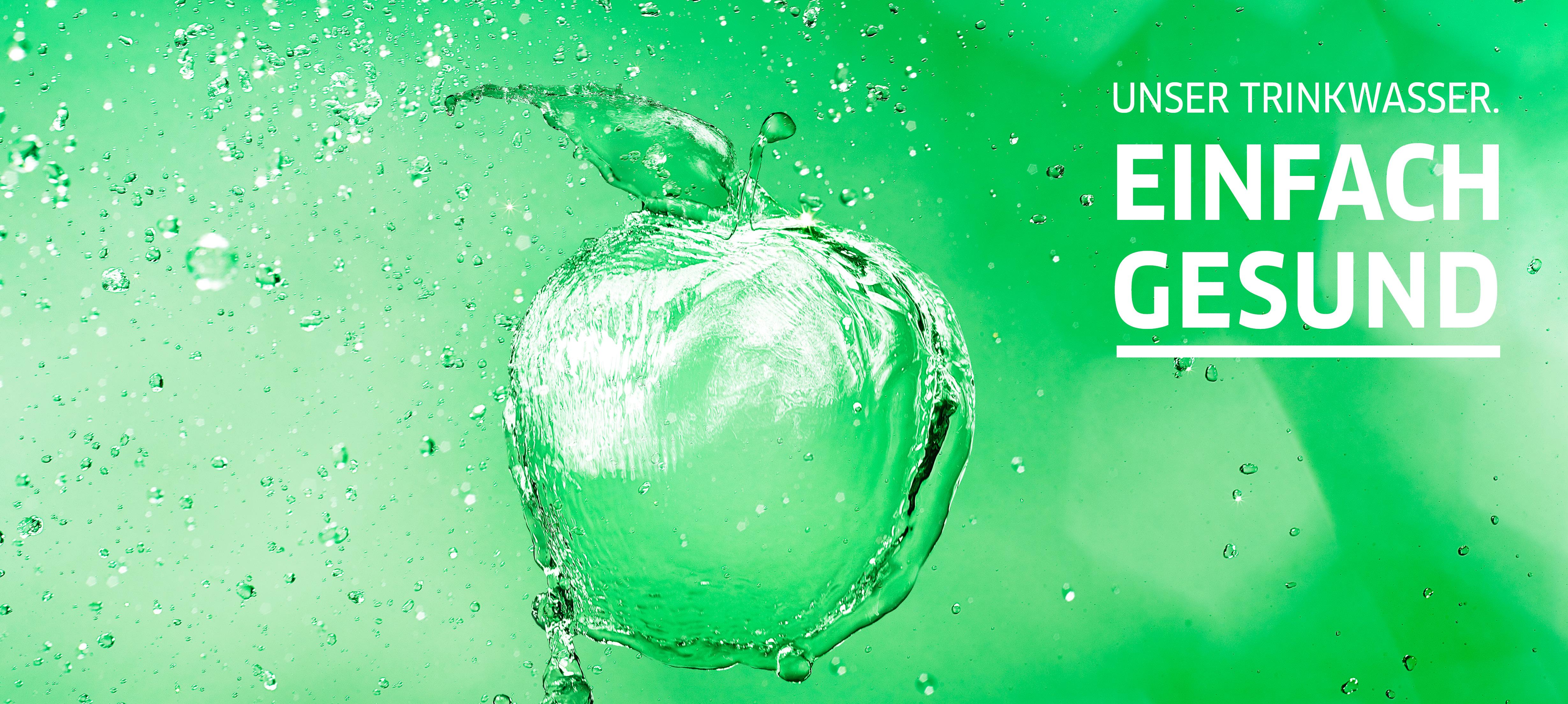 Hallesche Wasser und Stadtwirtschaft GmbH